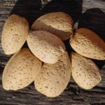 Almond Ne Plus Ultra
