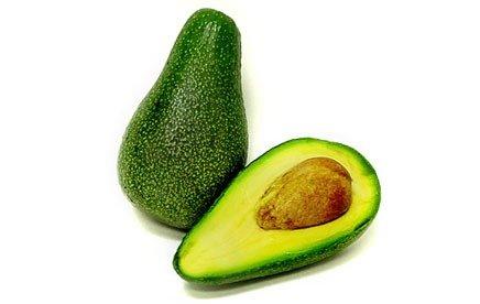 Fuerte avocado – advanced