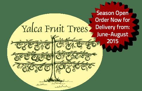 Fruit Trees for sale 2015 season open