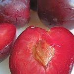 Sultan blood plum
