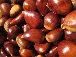 Chestnut Trees